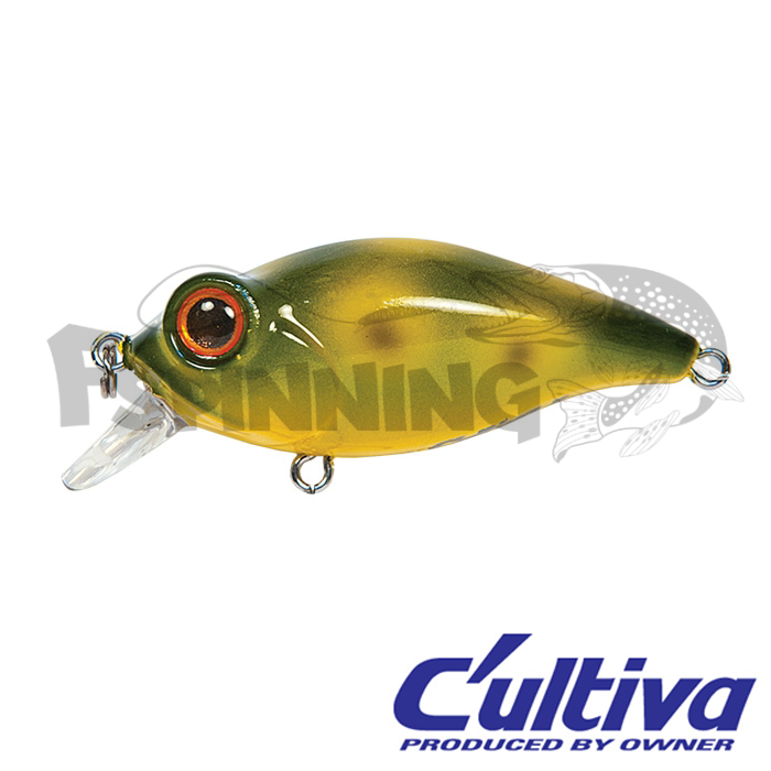Воблер C'ultiva Bug Eye Bait BB-48F цвет 53 (6,5г) 48мм