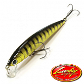 Flash Minnow 80SP Воблер Lucky Craft Flash Minnow 80SP 5,3gr #242 Black Gold